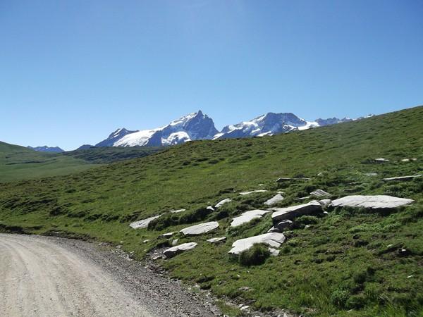 Vue sur le Massif des Ecrins avec la Meije et le Rateau.