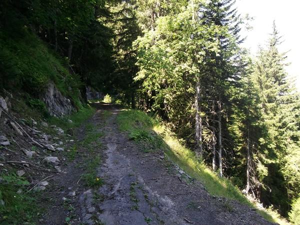 Sur l'ancienne route - il y a encore du goudron...