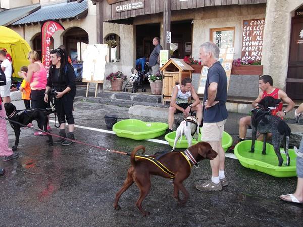 Les bacs pour rafraîchir les chiens, à droite, le vainqueur de l'étape avec son chien qui est ENORME !
