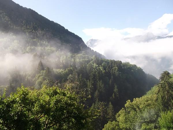 Armentier est dissimulé juste la forêt juste au milieu de la photo.