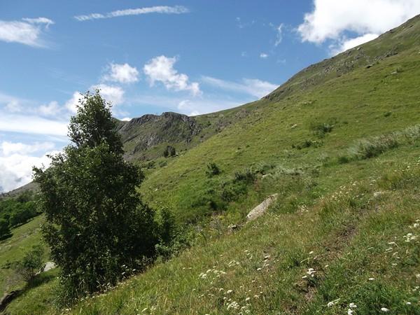 Un peu à droite de l'arbuste et des rochers, le Col de Sarenne.