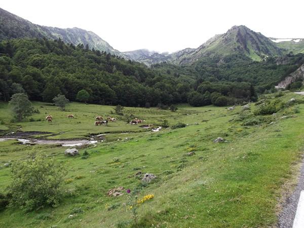 Route pastorale.