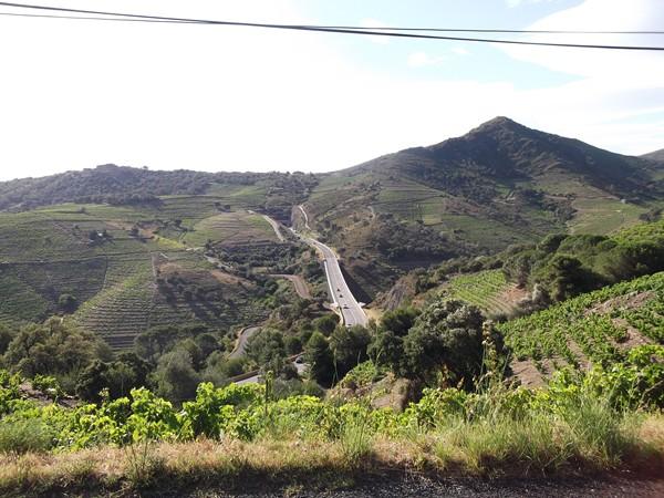 Le Massif des Albères, du vignoble partout et la N114 qui s'enfonce dans la montagne.