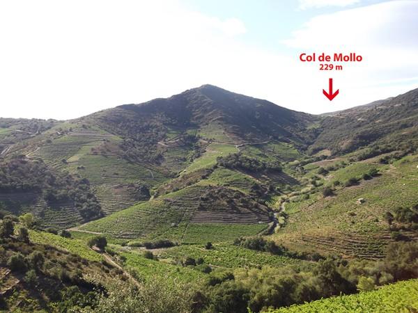 Dans la montée du Col d'en Calbo, on peut aussi voir le Col de Mollo.
