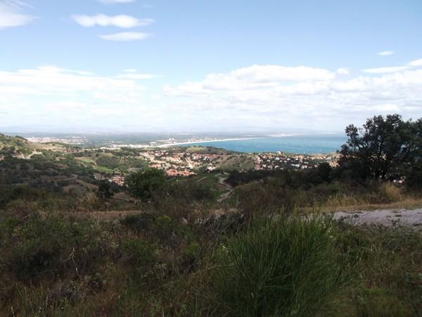 Collioure et en arrière-plan la plage d'Argelès.